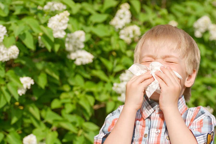 врач аллерголог ребенку в спб